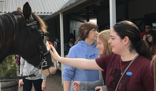 Gifted & Talented students visit the Kentucky Horse Park.